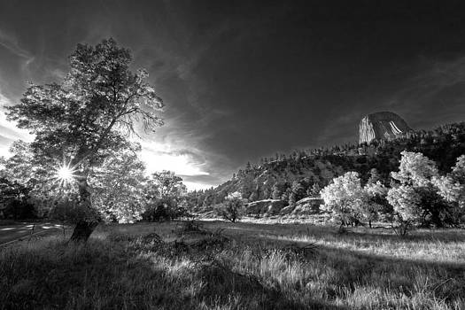 Devil's Tower- Black and White by Chris Allington