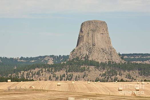 Devils tower by Russell Christie