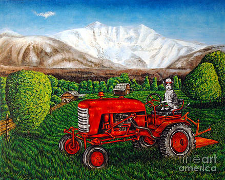 Devon Rex Cat on the Farm by Jay  Schmetz