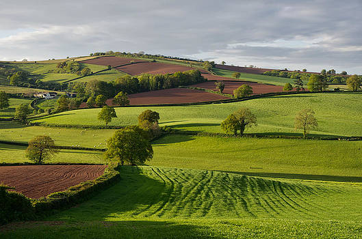 Devon Rural scene by Pete Hemington
