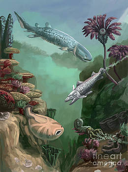 Spencer Sutton - Devonian Period