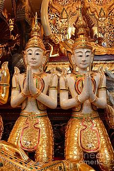 Devoting Buddha  by Bobby Mandal