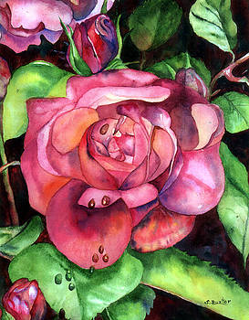 Susan Duxter - Dew on Roses