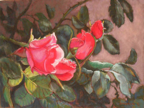Dewy Roses by Julie Mayser