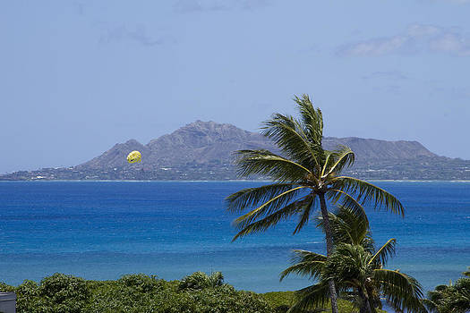Diamond Head View by Ashlee Meyer