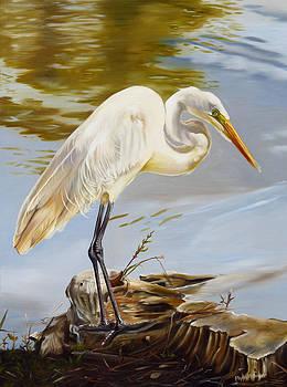 Diamondhead Pond Great Egret by Phyllis Beiser