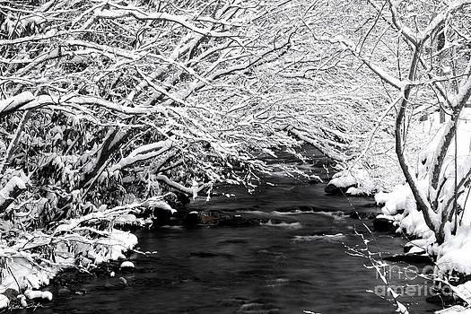 Dick's Creek Snow 2014 by Matthew Turlington