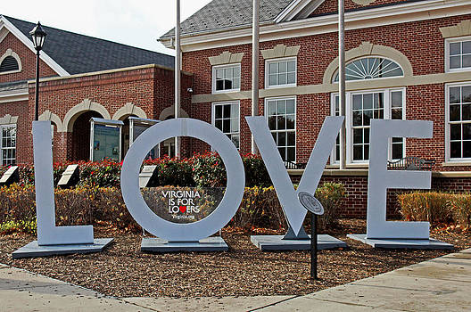 Did You Know Virginia Is For Lovers by Carolyn Ricks