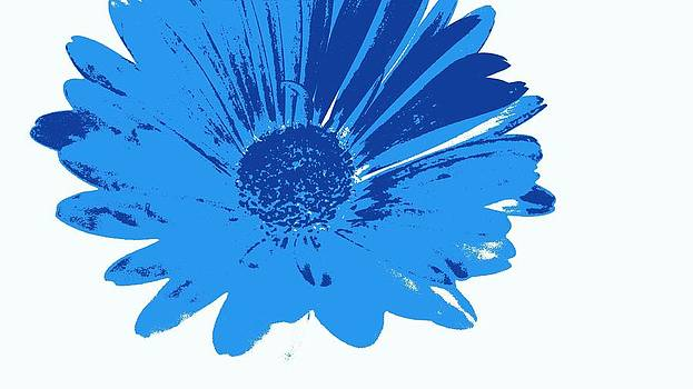 Kevin D Davis - Digital Blue Daisy