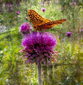 Digital Butterfly Painting by Jens Larsen