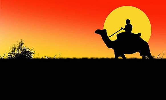 Digital Desert by Jak Sundar