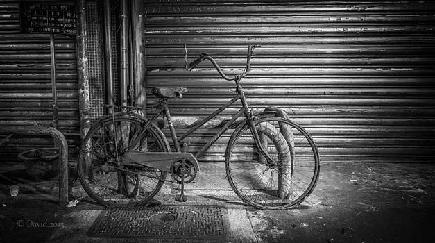 David Thompson - Dilapidated Bicycle