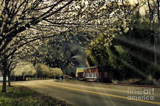 Dillsboro Spring. by Itai Minovitz