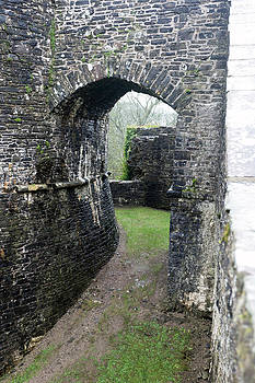 Dinefwr Castle gate by Paul Cowan