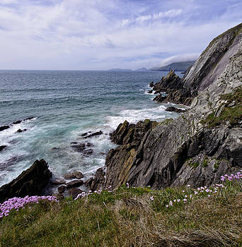 Dingle Peninsula Ireland by Dick Wood