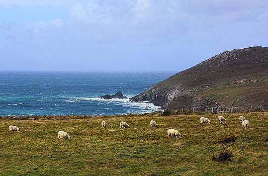 Dingle Peninsula by Lanis Rossi