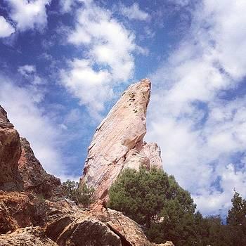 Dinosaur National Park #rocks #fossils by Dan Mason