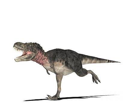 Friedrich Saurer - Dinosaur Tarbosaurus