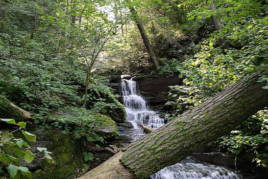 Gene Walls - Discovering The Nameless Hidden Waterfall
