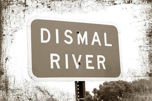 Dismal River by Andrea Kelley