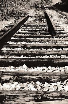 Arkady Kunysz - Dismantled railway