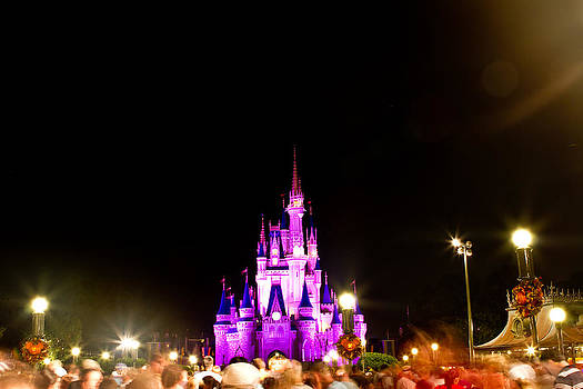 Fizzy Image - Disney castle at night
