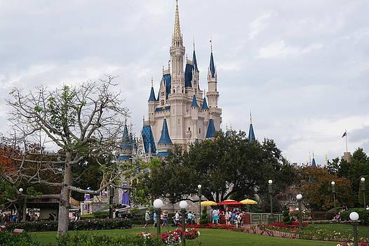 Disney Castle by Chris Reeder