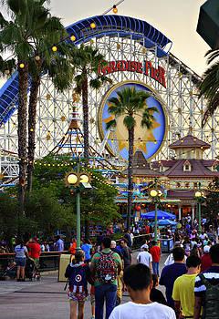 Ricky Barnard - Disney Paradise