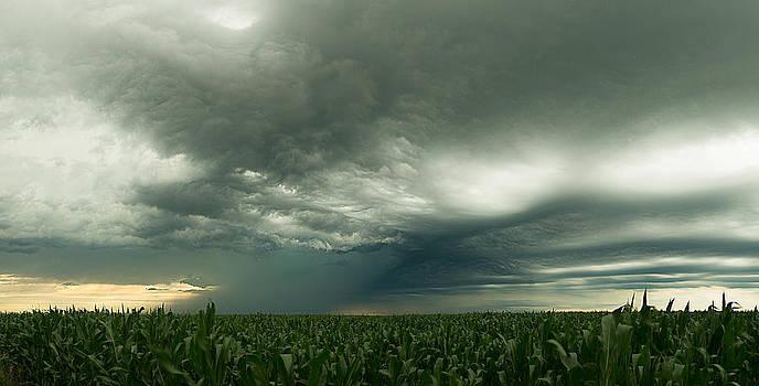 Distant Downpour by Joseph Mills