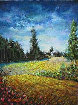 Distant Farm by John Carroll