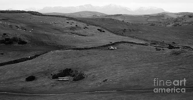 Malcolm Suttle - Distant Hills