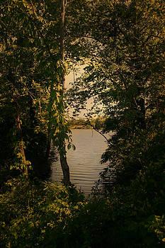 Nina Fosdick - Distant Shore