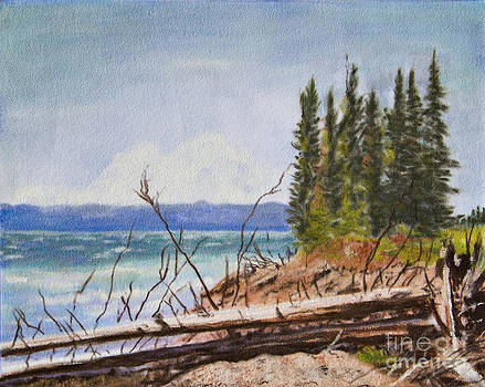 Yellowstone Lake by Terry Anderson