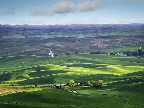 Victoria Porter - Distant Vista from Steptoe Butte