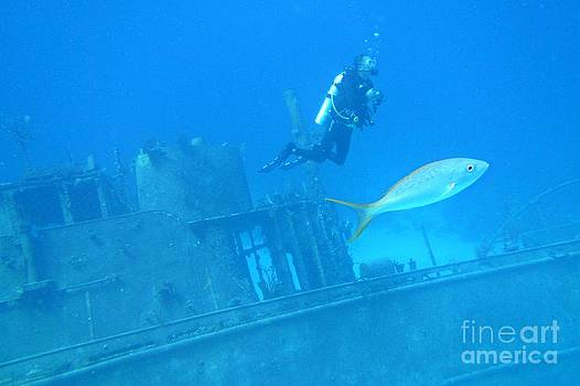 John Malone - Diver on Ship Wreck with Tropical Fish