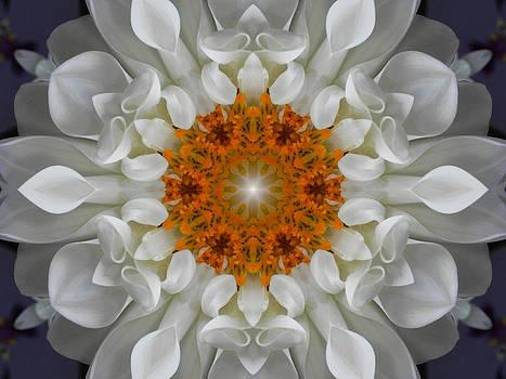 Divine Love Flower Mandala by Diane Lynn Hix