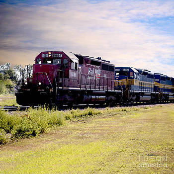 DME Trains by TommyJohn PhotoImagery LLC