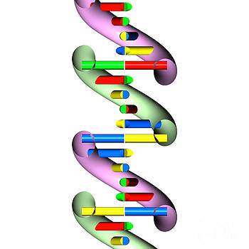 DNA abstract section 1 by Russell Kightley