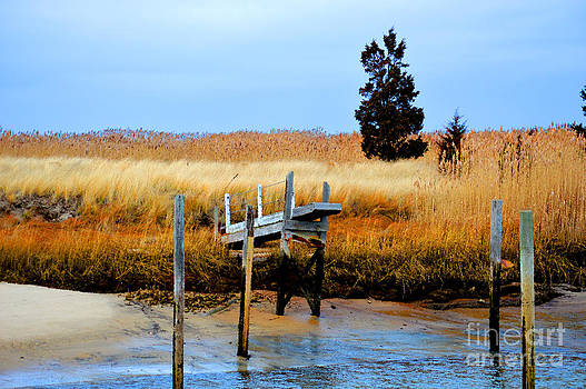 Dock at Low Tide by Phil Hawn
