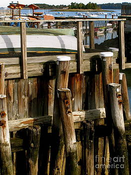 Carolyn Kami Loughlin - Dock Pilings