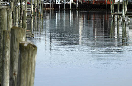 Dock reflection. by Danielle Allard