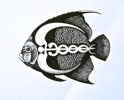 Doctor Fish by Jim Ellis