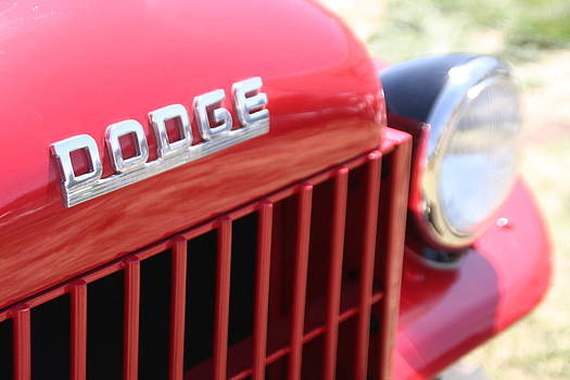 Dodge by David S Reynolds
