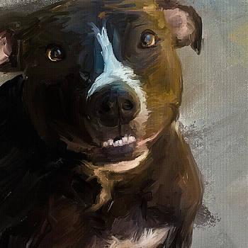Dog 1 by Scott Melby
