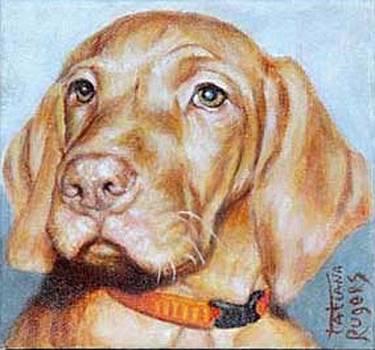 Dog 2. Proud beauty. by Rugers Tatiana
