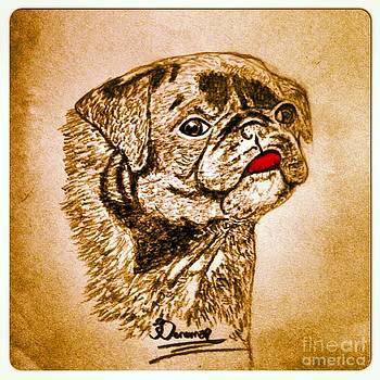 Dog by Abiodun Bewaji