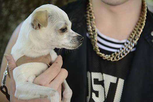 Teo SITCHET-KANDA - Dog And True Friendship 1