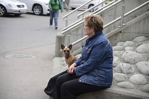 Teo SITCHET-KANDA - Dog And True Friendship 12