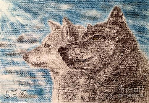 Dog and Wolf  by Keiko Olds