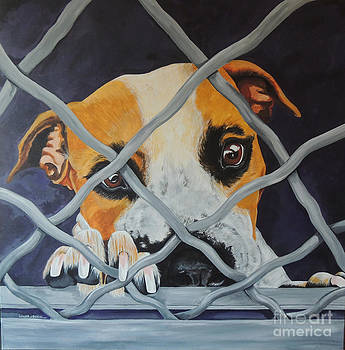 Dog Behind Chain Link by Laura Bolle